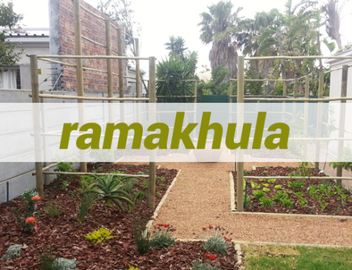 Ramakhula