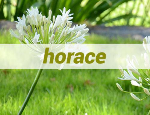 Horace's Garden