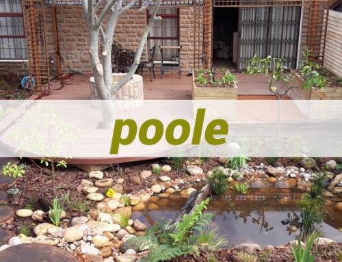 Poole